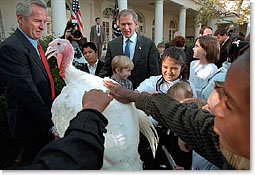 """After pardoning a turkey from the Thanksgiving dinner table, President George W. Bush invites children to pet Liberty, the freed bird. """"Through the generations, our country has known its share of hardships. And we've been through some tough times, some testing moments during the last months,"""" said President Bush. """"Yet, we've never lost sight of the blessings around us: the freedoms we enjoy, the people we love, and the many gifts of our prosperous land."""". White House photo by Susan Sterner."""