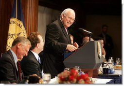 Vice President Dick Cheney delivers remarks at the Gerald R. Ford Journalism Prize Luncheon, Monday, June 19, 2006 at the National Press Club in Washington, D.C.  White House photo by David Bohrer
