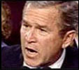 Picture of George Bush. Video Capture by Constance Colabatistto