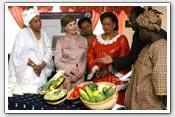 Link to Mrs. Bush's 2007 Africa Visit