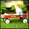 Photo of child in red wagon
