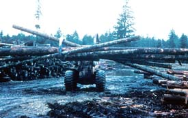 Unsafe handling of logs