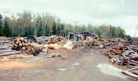 Log yard - small sawmill