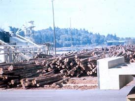 Secure, stable log piles in storage yard