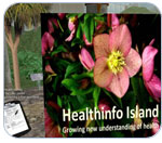 Screen shot of HealthInfo Island on Second Life