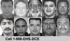 ICE Most Wanted Fugitives