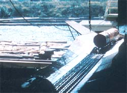 Chain conveyor moving logs from boom pond into mill.