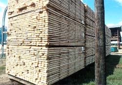 Stable lumber pile