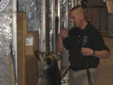 Photo of a TSA handler and his explosives detection canine searching cargo