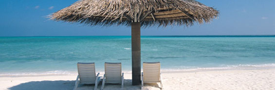 Photo of a beach umbrella overlooking an ocean