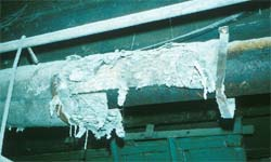 Close-up view of damaged asbestos pipe lagging in sawmill basement.