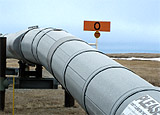 Section of above ground pipeline