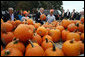 President George W. Bush picks through a patch of pumpkins at a roadside stand with owner Bill Gaulmyer in Richmond, Va., Thursday, Oct. 19, 2006. White House photo by Paul Morse