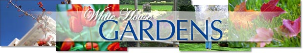 White House Gardens Front Page