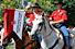 Photo: Mounted Color Guard