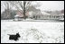 Barney finds a winter wonderland as he come out to play on the South Lawn of the White House, Wednesday, Dec. 5, 2007.