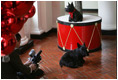 Barney and Miss Beazley show their best sides to the camera during the making of the 2006 Barney Cam, Wednesday, Nov. 29, 2006, in the East Wing of the White House. White House photo by Kimberlee Hewitt