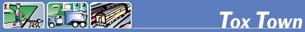 Tox Town Web page header - 600X63 pixels - 10 KB