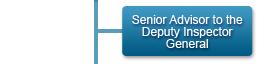 Senior Advisor to the Deputy Inspector General