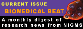Biomedical Beat - latest issue