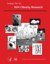 The Strategic Plan for NIH Obesity Research report cover