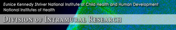 Eunice Kennedy Shriver National Institute of Child Health and Human Development, Division of Intramural Research