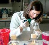 NIAID Researcher Kristin McNally