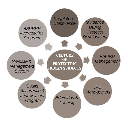 Components of the NIEHS Office of Human Research Compliance