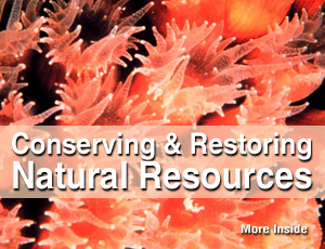Conserving & Restoring Natural Resources.