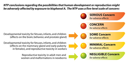 NTP conclusions regarding the possibilities that human development or reproduction might be adversely affected by exposure to bisphenol A.  The NTP uses a five-level scale of concern. No serious concern for adverse effects. No concern for adverse effects. Some concern for adverse effects: Developmental toxicity for fetuses, infants, and children (effects on the brain, behavior, and prostate gland). Minimal concern for adverse effects: Developmental toxicity for fetuses, infants, and children (effects on the mammary gland and early puberty in females), and Reproductive toxicity in workers. Negligible concern for adverse effects: Reproductive toxicity in adult men and women and malformations in newborns.