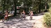 Twin Lakes Campground - Hartwell Lake - SC