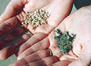 Raw (right hand) and popped (left hand) vermiculite