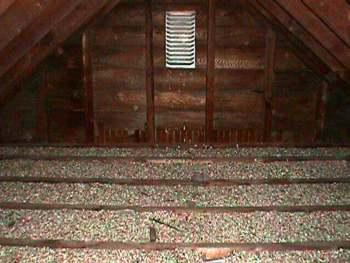 Attic Containing Vermiculite Insulation