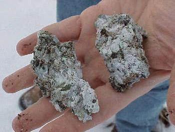 Figure 2. Photograph of a sample of Libby, Montana