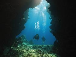 kelton mcmahon and leah houghton scuba diving