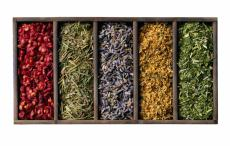 Photograph of dried herbs and flower parts