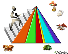 Illustration of the food guide pyramid