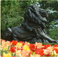 bronze lion at the Zoo's entrance