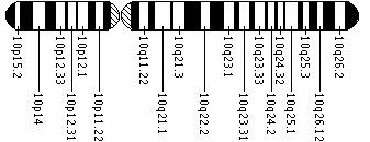 Ideogram of chromosome 10