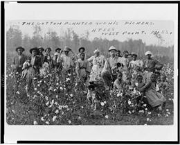 Postcard showing Euro American man holding shotgun and dog, with African American men, women, and children, in cotton field.