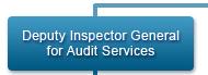 Deputy Inspector General for Audit Services