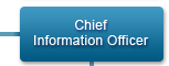 Chief Information Officer