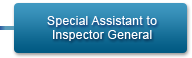Special Assistant to Inspector General