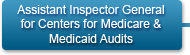 Assistant Inspector General for Centers for Medicare and Medicaid Audits
