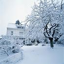 winter weather scene