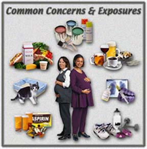 Several common concerns and environmental exposures that may affect pregnant women