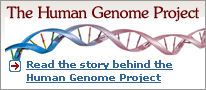 Read the story behind the Human Genome Project