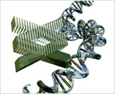NHGRI logo with a DNA double-helix