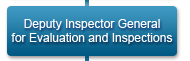 Deputy Inspector General for Evaluations and Inspections