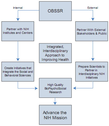 Internal and external components of the OBSSR vision